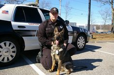 Kaiser of the Plymouth PD in Massachusetts &  Patrolman Jamie Lebretton (find Plymouth Police Working Dog Foundation on Facebook)
