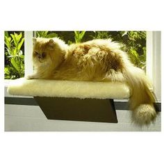 The comfort window cat perch is easy to install and holds pets up...