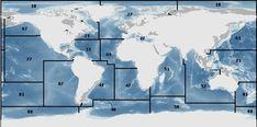 FAO Fishing Area Map