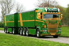 Custom Big Rigs, Custom Trucks, Show Trucks, Big Trucks, Road Train, Heavy Truck, Busses, Cars And Motorcycles, Vehicles