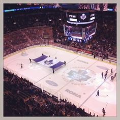 Toronto Maple Leafs - All For Garden Hockey Rules, Hockey Mom, Ice Hockey, Hockey Stuff, Toronto Maple Leafs Wallpaper, Toronto Maple Leafs Logo, Wallpaper Toronto, Outdoor Rink, Maple Leafs Hockey