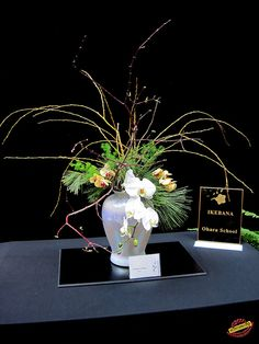 Ikebana - Ohara School mC20100327 104 by fotoproze, via Flickr