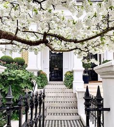 f you are looking for mega charm or just something unique, today we are sharing beautiful driveway inspirations that increase your home's curb appeal. Mug Design, Home Design, Inspiration Design, Garden Inspiration, Garden Ideas, Design Ideas, Most Beautiful Images, Beautiful Homes, Beautiful Things