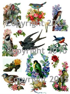 Printable Victorian Birds and Flowers 102 Collage Sheet. by joapan