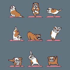 Fitness Based Yoga Classes, Upbeat Music & a Heart-Pumping Workout. Try Bulldog Yoga Studios w/ Locations in Villanova & Malvern, PA as well as Boulder, CO. Bulldog Breeds, Bulldog Puppies, British Bulldog, French Bulldog, Mini English Bulldogs, English Bulldog Art, Bulldog Tattoo, Bulldog Drawing, Yoga Art