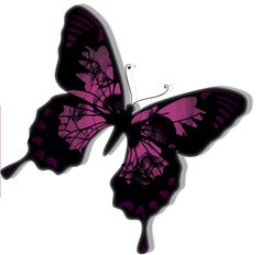 Skull and Butterfly Design by PetiteDesse on @DeviantArt