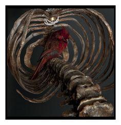 Atrial Flutter – Polly Morgan, 2010 Taxidermy Cardinal, resin, plastic, wire x x Visual Metaphor, Wallpaper Magazine, London Art, Weird Art, Skull And Bones, Dark Beauty, Macabre, Les Oeuvres, Birds