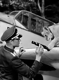 Franz von Werra, German World War II pilot with his pet lion Simba. Ace Luftwaffe fighter pilot Franz Xaver, Baron von Werra, an impoverished Baron of Swiss ancestry. He was shot down over Britain and captured. He escaped his POW camp in Canada and returned to Germany via the USA, Mexico, South America and Spain. Von Werra reported to the German High Command on his civilised treatment as a POW. This led to the improved treatment of allied POWs in Germany.