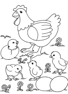 Chicken And Her Chicks Color Page Animal Coloring Pages For Kids Thousands Of Free Printable