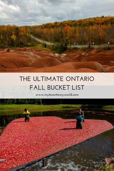 The Ultimate Ontario Fall Bucket List with a huge list of things to do in Ontario this fall Travel Vacation List Holiday Tour Trip Destinations Vancouver, Toronto Canada, Canada Ontario, Montreal Canada, Alberta Canada, Travel Guides, Travel Tips, Budget Travel, Travel Hacks