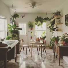 Articles about photo week plant filled austin dining room. Dwell is a platform for anyone to write about design and architecture. Chinese Interior, Asian Interior, Dining Room Office, Dining Room Bar, Dining Area, Filipino, Indoor Garden, Indoor Plants, Tropical Houses