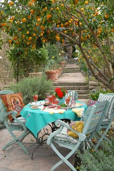 Perfect table and setting...love everything especially the path the orange trees.