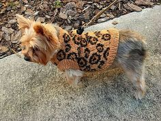 SEXY BEAST Dog Sweater Knitting Pattern  by mysavannahcottage, $6.00