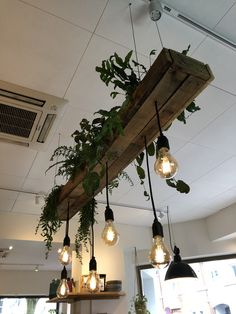 House Plants Decor, Plant Decor, Coffee Shop Interior Design, Deco Restaurant, Diy Home Decor, Room Decor, Interior Decorating, Sweet Home, House Design