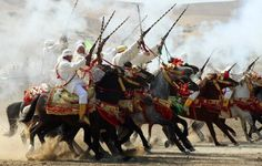 The View from Fez - Photo Journal: Tissa Horse Festival 2011 ~ Photo Essay