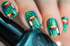 Didoline's Nails: Toucans