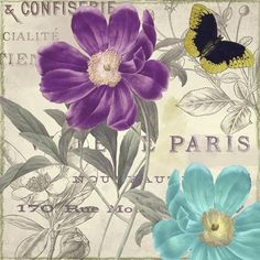 Petals+of+Paris+II