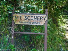 Hiking Saba's Mount Scenery