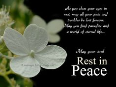 15 Best Rest In Peace Quotes Images Proverbs Quotes Thinking