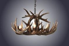 Dimensions: Approximately Diameter / TallWe Ship NationwideProudly American Made in East Texas.Hand-made antler chandeliers begin with hand selected shed antlers (no deer are killed). All antler products are authentic. Deer Antler Chandelier, Antler Lights, Wooden Chandelier, Antler Art, Beaded Chandelier, Chandeliers, Antler Wreath, Antler Crafts, Jellyfish Lamp