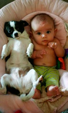 Who stole the bed? The dog or the baby? How precious!