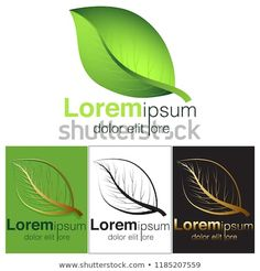 Find Eco Green Logo stock images in HD and millions of other royalty-free stock photos, illustrations and vectors in the Shutterstock collection. Thousands of new, high-quality pictures added every day. Eco Green, Green Logo, Plant Leaves, Royalty Free Stock Photos, Logos, Pictures, Image, Photos, Logo