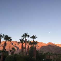 Good morning from Palm Springs - cooler weather ahead 😎🌴⭐️ Great Places, Places To Go, Beautiful Places, Palm Springs, Good Morning, Aqua, California, Weather, Buen Dia