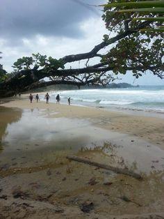Red Frog Beach -  Bocas del Toro, Panama.