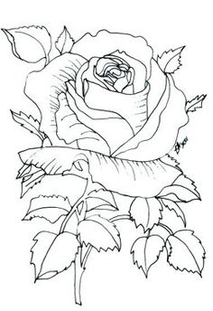 Pergamano šablony - free pattern - Kateřina Horáková - Picasa We albums Paper Embroidery, Embroidery Patterns, Rose Embroidery, Machine Embroidery, Parchment Cards, Wood Burning Patterns, Coloring Book Pages, Digital Stamps, Pyrography