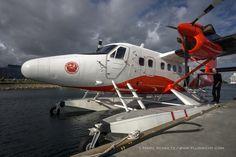 Flying with Nordic Seaplanes in Copenhagen