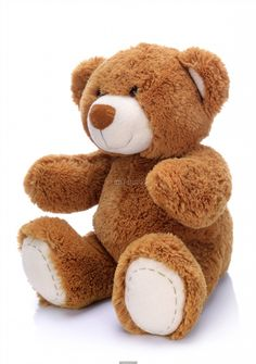 Poster Of Sweet Teddy Bear On A White Background Animals Posters