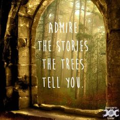 nature quotes inspirational Pagan quotes - Nature is my church Pagan inspiring images and quotes Mother Nature Quotes, Quotes About Nature, Trees Quotes Nature, Forest Quotes, Quotes About Trees, Pagan Quotes, Wisdom Quotes, Quotes Quotes, Qoutes