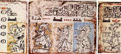 Mayans create words using a Syllabary, not an Alphabet. Words and phrases are created using bold brush strokes. Narrative paintings are used throughout the codices and become phrases themselves. Maya words are formed from various combinations of nearly 800 signs, and each sign represents a full syllable.