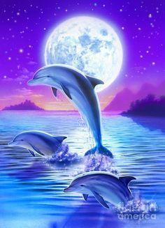 Robin Koni Digital Art - Day Of The Dolphin by Robin Koni