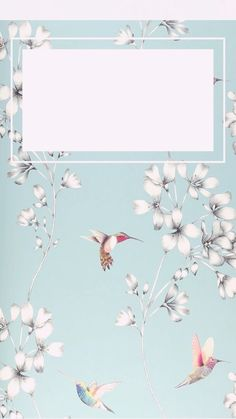Floral and hummingbird wallpaper for iPhone 5S or SE.