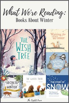 What We're Reading: Books About Winter