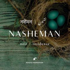 Hindi/Urdu word : Nasheman