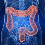 Ecco perché è importante disintossicare l' intestino in modo naturale. Scopri come…IL VIDEO