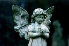 #stone #angels #sculpture