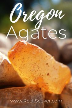 Wondering where to find agates in Oregon? Well, here are some of the best places to find AGATES IN O Oregon Vacation, Oregon Road Trip, State Of Oregon, Oregon Travel, Oregon Coast, Road Trips, Oregon Utah, Travel Portland, Oregon Camping