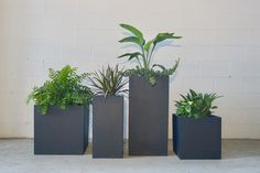 Modern Living, Mid-century Modern, Rectangular Planters, Stuff To Do, Planter Pots, Swag, Outdoors, Indoor, Furniture