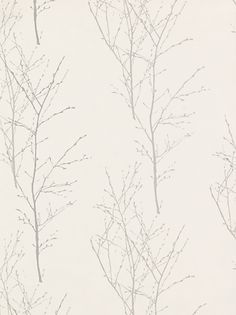 Buy John Lewis Wallpaper, Birch, Silver online at JohnLewis.com - John Lewis