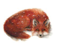Fox Watercolor Archival Print