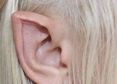 Elf Ears, Dibujos Cute, Forest Fairy, Body Mods, Photo Dump, Faeries, Aesthetic Pictures, Piercing, Pure Products