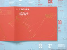 Nicholas Felton's annual reports are beautiful!