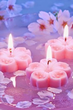 Pretty in Pink Lit Candles Candle Lanterns, Pillar Candles, Pink Candles, Floating Candles, Tea Light Candles, Couleur Rose Pastel, Bougie Candle, Candle In The Wind, Flower Tea