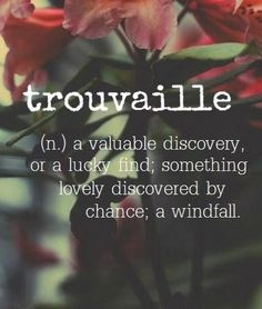 Word for the Day: Trouvaille (n), a valuable discovery or a lucky find; something lovely discovered by chance; a windfall The Words, Fancy Words, Weird Words, Pretty Words, Cool Words, Beautiful Words, Unusual Words, Unique Words, Aesthetic Words
