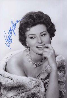 Sophia Loren Original Signiertes Foto 20x30 Cm | eBay