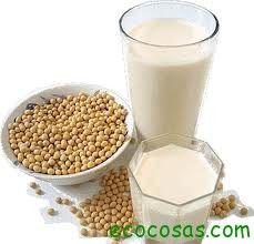 Como preparar bebidas o leches vegetales