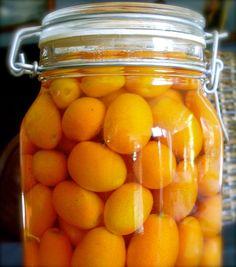 Cumquats in Brandy Brookshire Goodner Things World Recipes, Home Recipes, Gourmet Recipes, Healthy Recipes, Healthy Food, Kumquat Recipes, My Favorite Food, Favorite Recipes, Fruit Drinks
